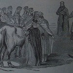 Torah-Pearls-24-Leviticus-01-Vayikra-150x150