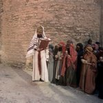 Torah-Pearls-31-Leviticus-08-Emor-150x150