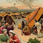 Torah-Pearls-36-Numbers-03-Behaalotecha-150x150