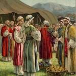 Torah-Pearls-37-Numbers-04-Shlach-150x150