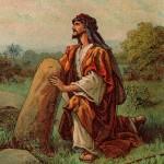 Torah-Pearls-48-Deuteronomy-05-Shoftim-150x150